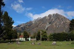 Piccolo maso con la montagna dietro, la Nuova Zelanda Immagine Stock Libera da Diritti