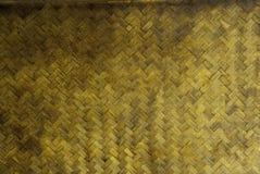 Piccolo modello del bambù di lerciume Fotografia Stock