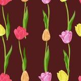 Piccolo modello floreale senza cuciture nel vettore illustrazione di stock