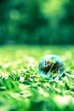 Piccolo mondo su vetro verde Fotografie Stock Libere da Diritti