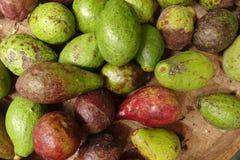 Piccolo mucchio verde e porpora dell'avocado fotografia stock libera da diritti