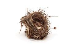 Piccolo nido vuoto dell'uccello isolato Fotografia Stock Libera da Diritti
