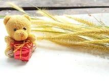 Piccolo orso con gife immagini stock libere da diritti