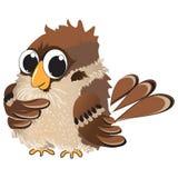 Piccolo passero dell'uccello Immagine Stock Libera da Diritti