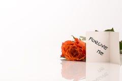 Piccolo perdonimi la carta accanto a Rosa arancio immagine stock