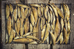 Piccolo pesce fumato Fotografia Stock Libera da Diritti