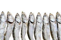 Piccolo pesce secco giapponese, washoku Fotografie Stock