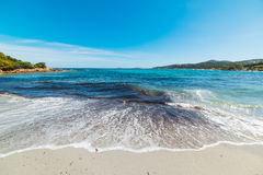 Piccolo Pevero beach under a clear sky. Sardinia Royalty Free Stock Photo