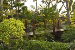 Piccolo ponte di legno nel parco Fotografie Stock
