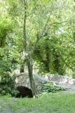 Piccolo ponte di pietra nella foresta Immagini Stock Libere da Diritti