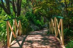 Piccolo ponte in mezzo al giardino Fotografie Stock Libere da Diritti