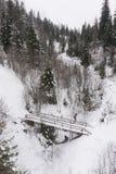 Piccolo ponte nella foresta innevata nelle montagne Immagini Stock