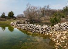 Piccolo posto di innaffiatura degli stagni per le pecore in primavera vicino a Lubenice Fotografie Stock