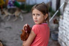 Piccolo ragazza rurale con il pollo nelle sue armi fotografie stock libere da diritti