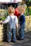 Piccolo ragazzi gemellati con capelli biondi che innaffiano il giardino Fotografie Stock