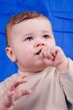 Piccolo ragazzo Fotografie Stock