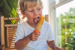 Piccolo ragazzo biondo sveglio che mangia un gelato casalingo che si siede su un wo Fotografie Stock Libere da Diritti