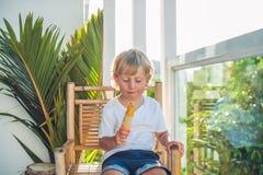 Piccolo ragazzo biondo sveglio che mangia un gelato casalingo che si siede su una sedia di legno Fotografia Stock