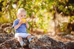 Piccolo ragazzo del bambino che cammina nel parco di estate all'aperto Fotografia Stock Libera da Diritti