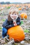 Piccolo ragazzo del bambino sul campo della toppa della zucca Fotografia Stock Libera da Diritti