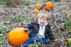 Piccolo ragazzo del bambino sul giacimento della zucca Fotografia Stock