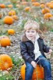 Piccolo ragazzo del bambino sul giacimento della zucca Fotografie Stock