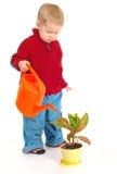Piccolo ragazzo del giardiniere Immagini Stock