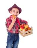 Piccolo ragazzo dell'agricoltore che assaggia buona mela Immagini Stock Libere da Diritti