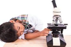 piccolo ragazzo dello studente che lavora con il microscopio Fotografia Stock