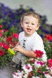 Piccolo ragazzo sorridente divertente che si siede con la pala del giocattolo sul letto di fiore il giorno soleggiato caldo all'a Immagine Stock