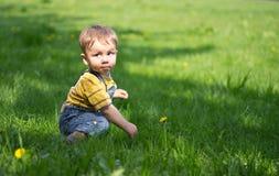 Piccolo ragazzo sull'erba con i denti di leone Fotografia Stock Libera da Diritti