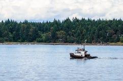 Piccolo rimorchiatore nel porto di Nanaimo Fotografia Stock