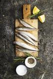 Piccolo sperlano fresco del pesce di mare, sardina su un fondo semplice con le fette del sale, dei rosmarini e del limone Vista s immagini stock libere da diritti