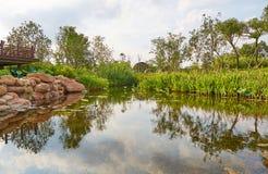 Piccolo stagno nel giardino immagine stock immagine di for Stagno artificiale giardino