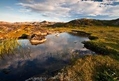 Piccolo stagno in tundra Fotografie Stock Libere da Diritti