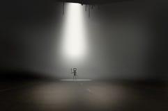 Piccolo straniero grigio nei raggi sulla strada Immagine Stock