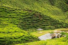 Piccolo supporto conico e cascata fatta umana circondati dalle colline Fotografie Stock