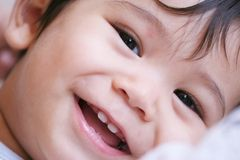 Piccolo tirante felice Fotografia Stock Libera da Diritti