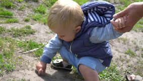 Piccolo tryng del figlio per toccare una formica su terra in parco al giorno soleggiato con un poco aiuto da suo padre video d archivio