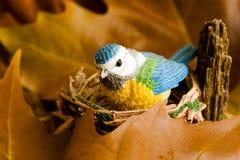 Piccolo uccello blu al nido fra i fogli Fotografia Stock Libera da Diritti
