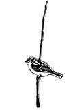 Piccolo uccello su un passero del ramo Fotografia Stock