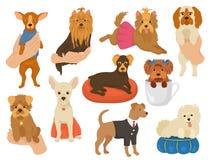 Piccolo vettore del cane un animale sveglio del cane-collare del piccolo carattere canino dell'animale domestico e una giovane il royalty illustrazione gratis