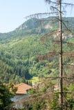 Piccolo villaggio alle montagne di Rhodope in Bulgaria Fotografia Stock