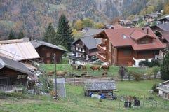 Piccolo villaggio dell'azienda agricola in Svizzera immagine stock