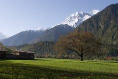 piccolo villaggio della montagna Fotografie Stock