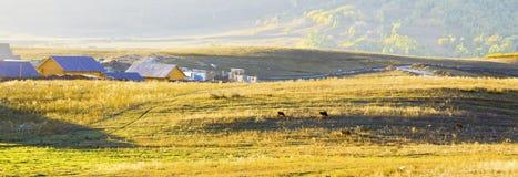 Piccolo villaggio prima di alba Immagini Stock Libere da Diritti