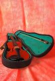 Piccolo violino Fotografia Stock