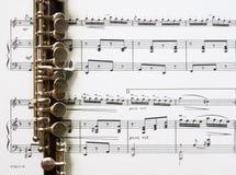 Piccoloflöten- und Blattmusik Stockbild