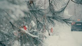 Picea al aire libre con los juguetes de la Navidad en las ramas en el invierno almacen de video
