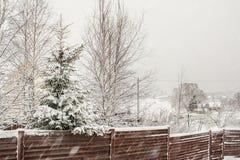 Picea y abedul del invierno Nevado detrás de una cerca de madera Imágenes de archivo libres de regalías